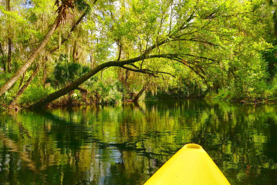 Fort King Paddling Trail